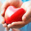 диагностика сердца у новорожденных