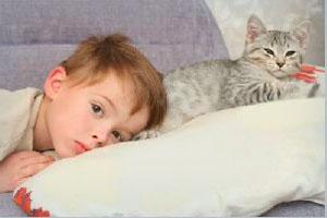 соседство новорожденных детей с домашними кошками