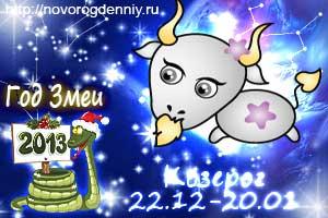 Гороскоп на 2013 год для маленького Козерога
